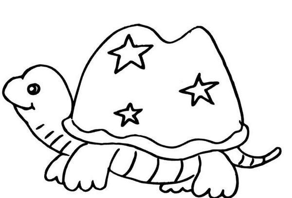 可爱的卡通小乌龟