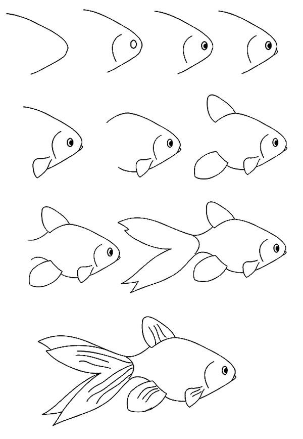 儿童简笔画动物鱼_美丽漂亮的小金鱼简笔画的步骤图 DIY小动物简笔画 肉丁儿童网