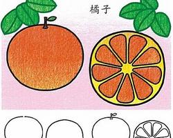 如何DIY橘子树简笔画方法图解 自制橘子树简笔画作品图片大全 肉丁儿童网