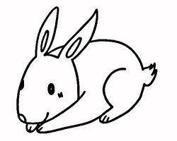 如何DIY简笔画兔子头饰方法图解 自制简笔画兔子头饰作品图片大全 肉丁儿童网